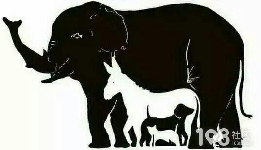下图有多少个动物,看谁找的多?