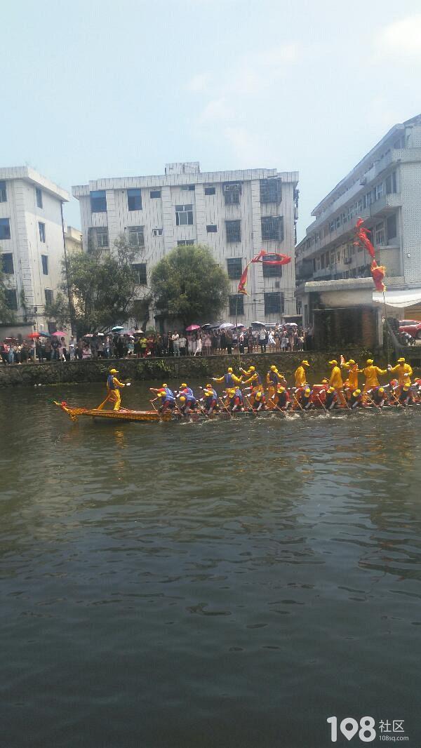 龙舟_畅说苍南_苍南108v社区社区拉着摩托艇上高速图片