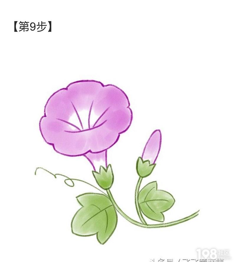 儿童简笔画,教您画出一朵美丽的牵牛花
