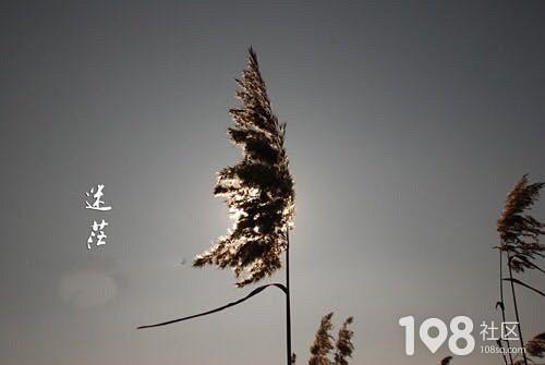 伴郎西服_畅说永康_永康108生活社区
