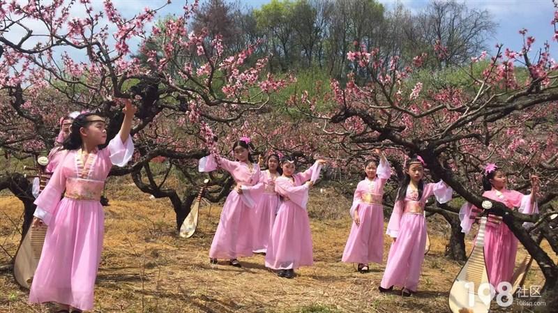 三生三世十里桃花,桃花林里弹琵琶的小仙女!