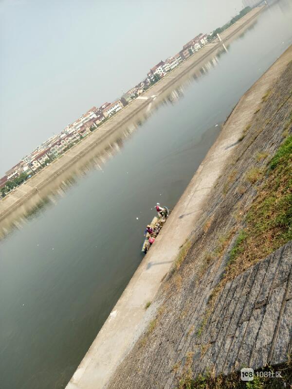 河面上还有油状漂浮物,很多鱼肚子朝上,恶臭浓郁,要知道,河沿岸很多