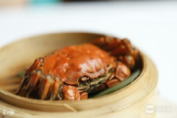 在家做南瓜,v南瓜排骨。_畅说衢州_衢州108生美味做法饭的河蟹图片