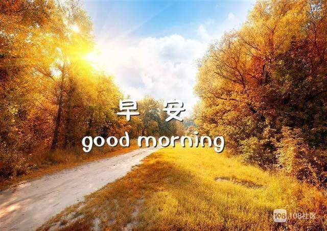 早安最美风景动态
