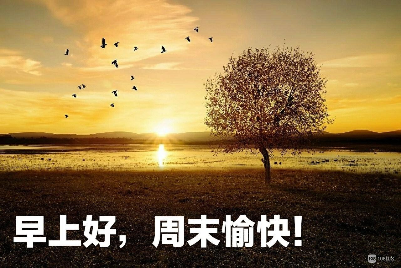 风景表情包早上好_风景表情包早上好分享展示