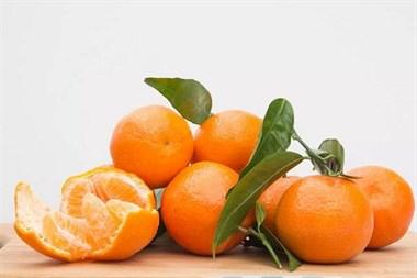 橘子皮都扔了?太可惜!用来养花不是一般的好!