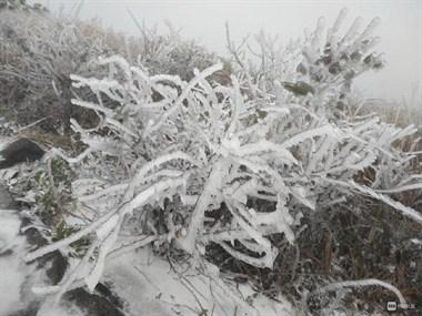 雪越下越大!我在覆卮山赏雪拍景,社友们你们在哪?