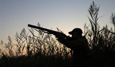 六旬老汉爱打猎,购买猎枪和30发子弹打野味被刑拘