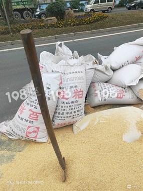 梁祝大道有豆粕撒落!好几十袋,铺的满地都是