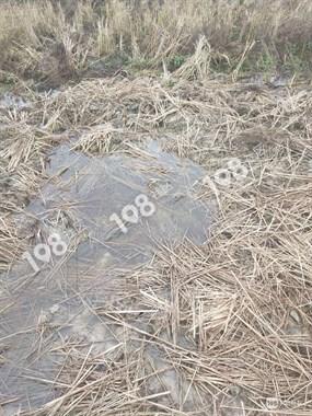 挖古器?社友家农田有被人挖过的痕迹,周围还有一些破碎的碗