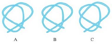 【答案公布】火眼金睛看一看,哪个绳子能打成结?