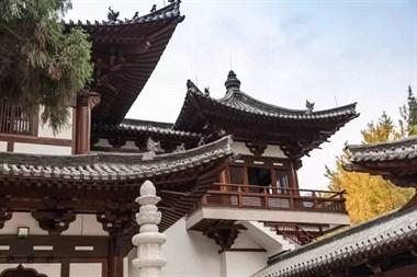 新年祈福 | 1.5 牧野带你探秘复建中的千年古寺—径山寺