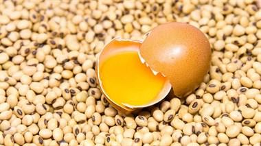 """豆浆""""冲""""鸡蛋液=中毒?没想到,真正引起中毒的是这个......"""