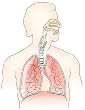发作1次,减寿5年!这种病每年致死百万人,很多人患上了却不知道!