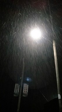 难怪天气那么冷!嵊州这些地方下起鹅毛大雪,地上已经一片白