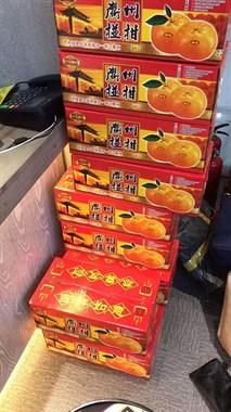 【转卖】衢州椪柑特大果(80公分以上的)