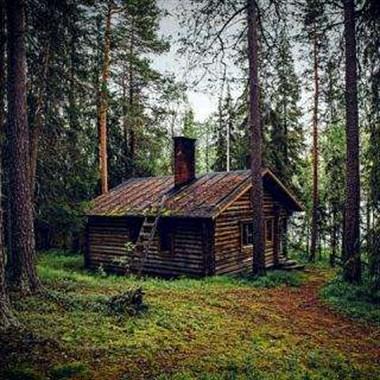 三合护林员住在山里,半夜总是听见敲门声,气得连喊带骂…